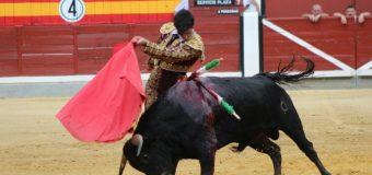 ENTREVISTA. Curro Castillo, el único novillero de la capital