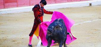 Galería de imágenes. Corridas de toros 18 octubre (Sebastián Piqueras)