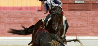 Debut arrollador de Guillermo Hermoso de Mendoza